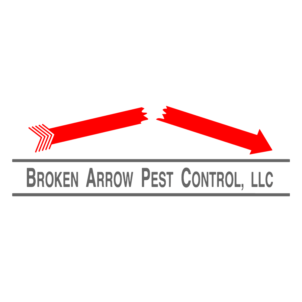 Pest Control Has Become One Of The Most Common Services Provided By A Pest Control Expert